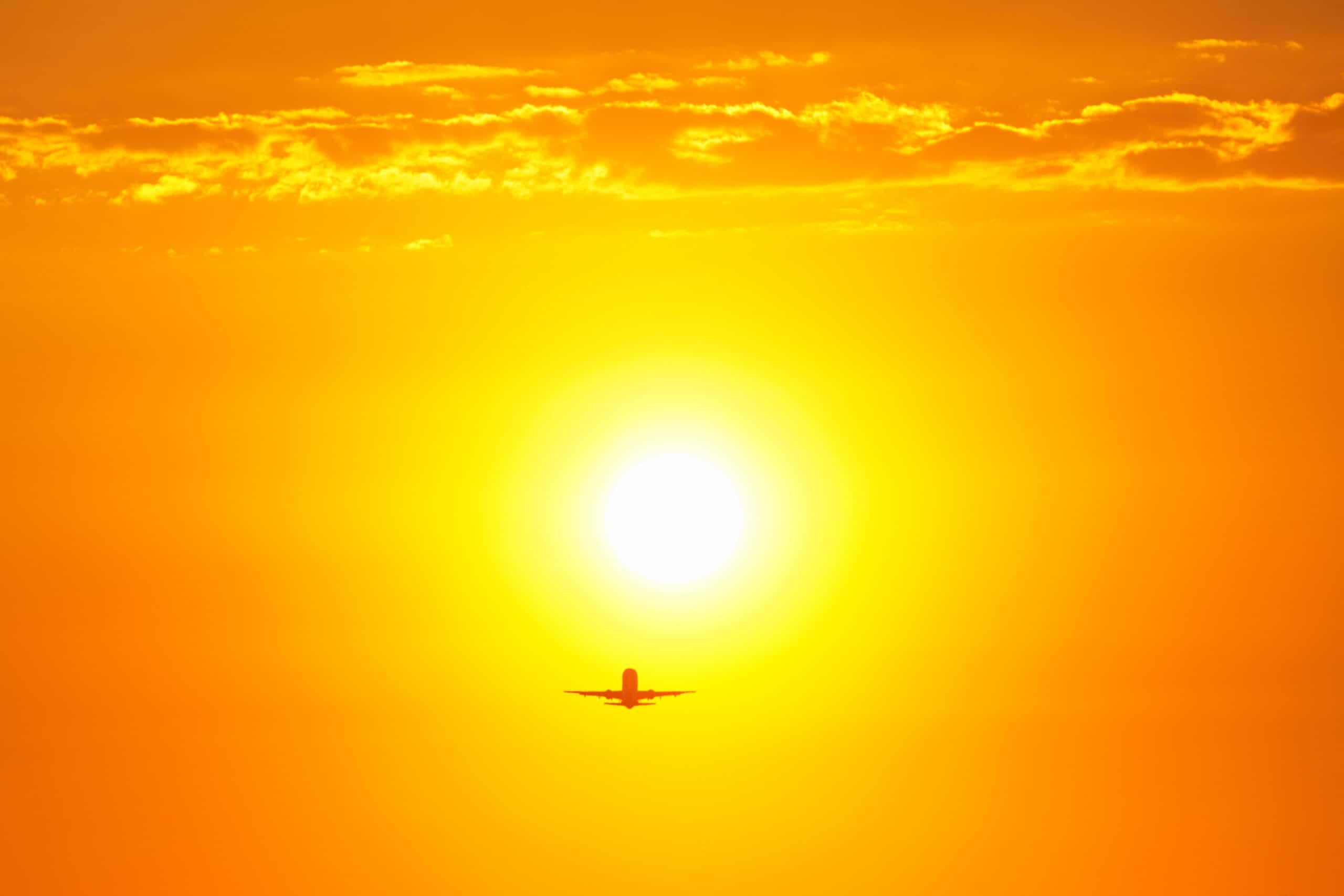 sol amarillo